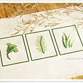 leaves‧清新的葉02.jpg