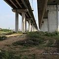 20130929橋下道路-010.JPG