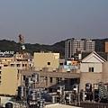 20131128竹北近況-009.JPG