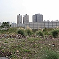 20131128竹北近況-087.JPG