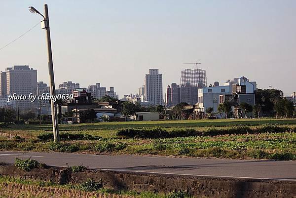 竹北近況20140115-026.JPG