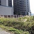 20140220竹北近況-082.JPG
