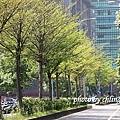 20140408竹北近況-039.JPG