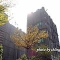 20140408竹北近況-040.JPG