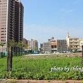 20140408竹北近況-065.JPG