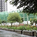 20140506竹北近況-076.JPG