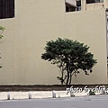 20140606竹北路拍-016.JPG