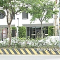 20140624竹北近況-147.JPG