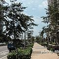 20140909竹北近況-012.JPG