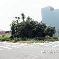 20140920竹北-027.JPG