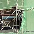 竹北近況20141125-019.JPG