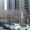 竹北近況20141125-052.JPG