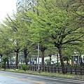 20150327竹北現況報導-008.JPG