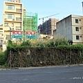 20140415竹北近況-065.JPG