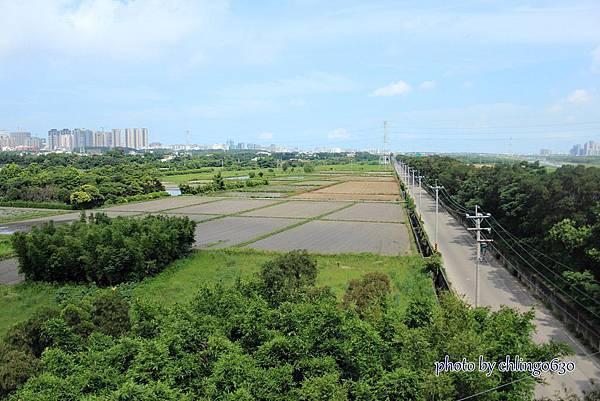 竹北近況20150615-221.JPG
