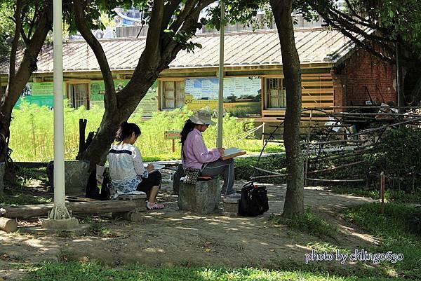 竹北近況20150615-088.JPG