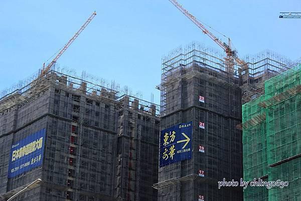 竹北近況20150615-152.JPG