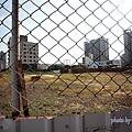 竹北近況20150715-009.JPG