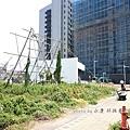 竹北近況20150805-051.JPG