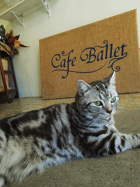 Cafe Ballet