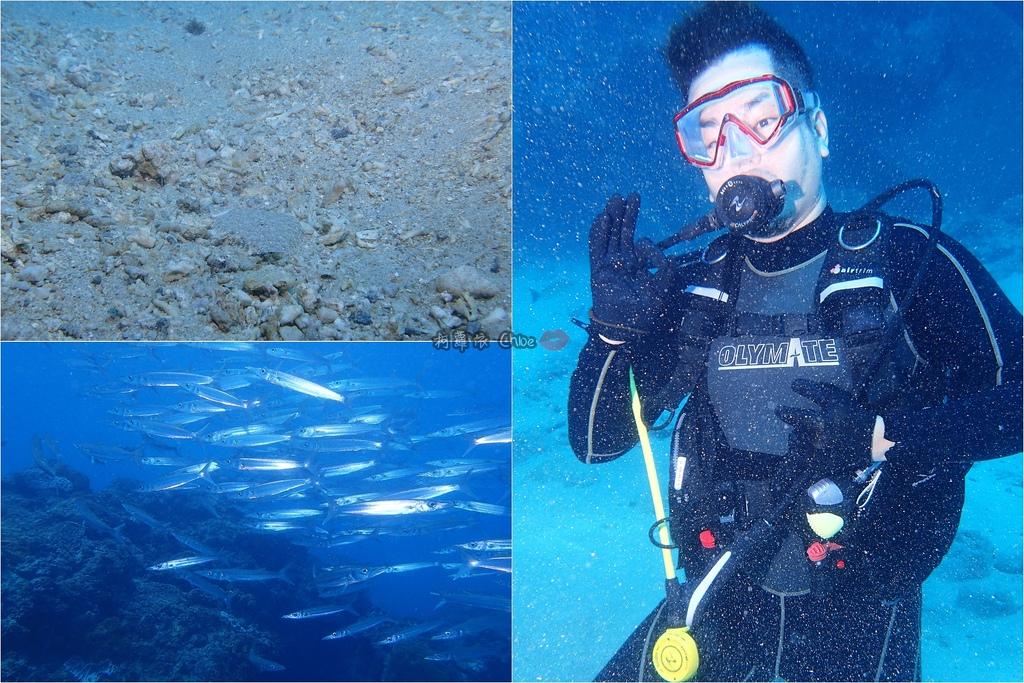 墾丁說走就走GO!二天一夜輕旅行 愛上潛水探索美麗的海洋 交給專業徜徉潛旅訓練中心52.jpg