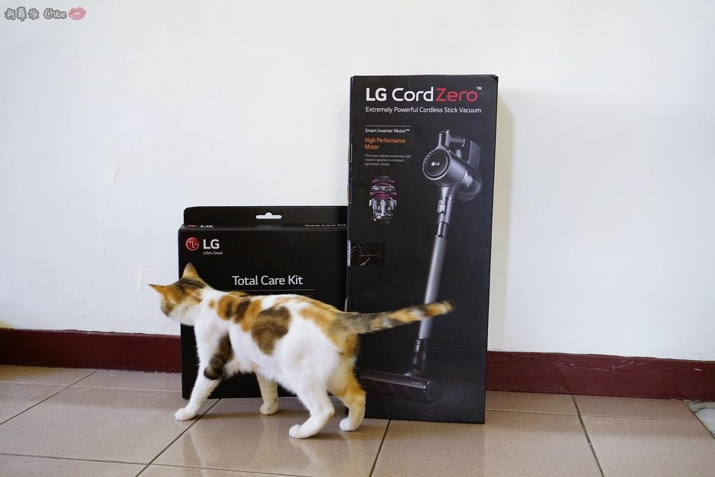 開箱 LG CordZero A9+ 快清式無線吸塵器 吸力強 乾淨 x 輕鬆 x 耐用 再升級2.JPG