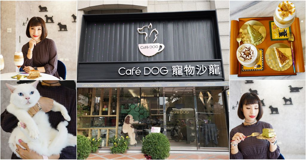 高雄 Cafedog寵物沙龍 寵物美容x網美咖啡廳複合店 優質服務和時尚空間 給毛小孩舒適SPA美容.jpg
