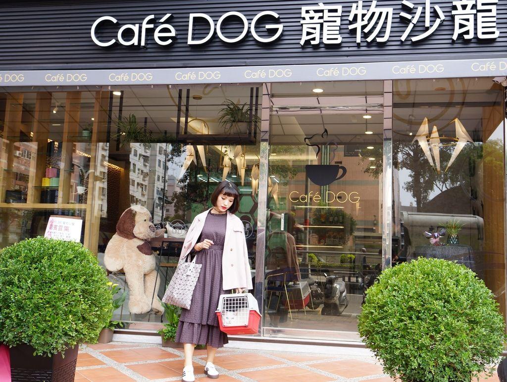 高雄 Cafedog寵物沙龍 寵物美容x網美咖啡廳複合店 優質服務和時尚空間 給毛小孩舒適SPA美容2.JPG