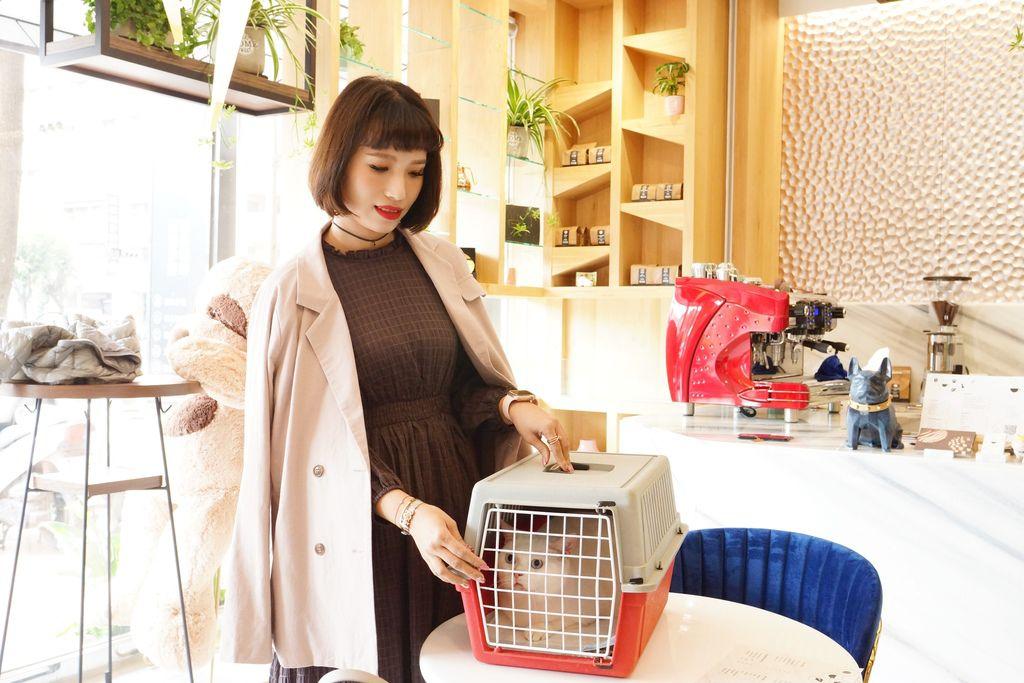 高雄 Cafedog寵物沙龍 寵物美容x網美咖啡廳複合店 優質服務和時尚空間 給毛小孩舒適SPA美容9.JPG