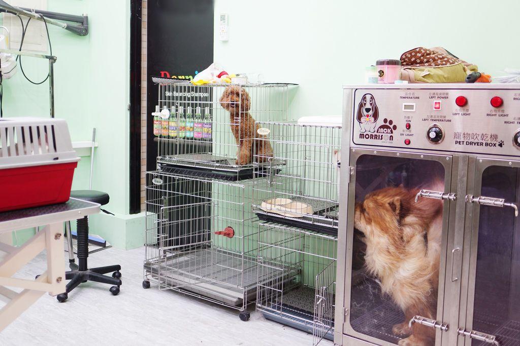 高雄 Cafedog寵物沙龍 寵物美容x網美咖啡廳複合店 優質服務和時尚空間 給毛小孩舒適SPA美容10.JPG