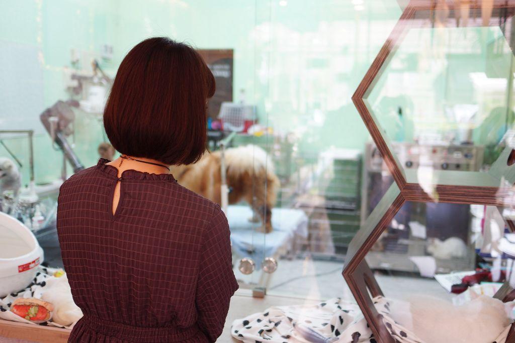 高雄 Cafedog寵物沙龍 寵物美容x網美咖啡廳複合店 優質服務和時尚空間 給毛小孩舒適SPA美容13.JPG