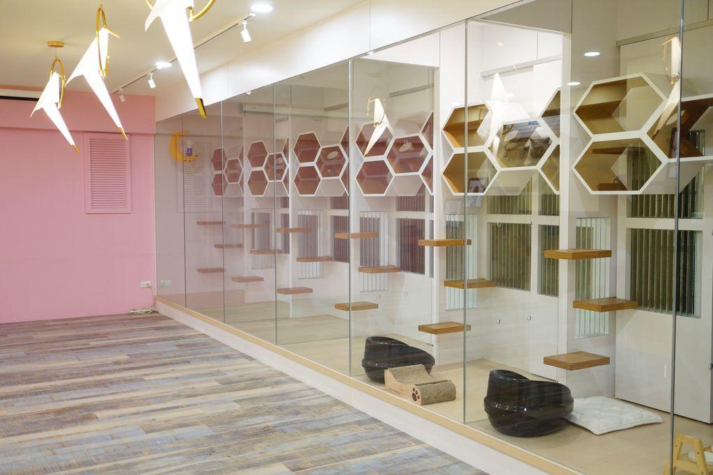 高雄 Cafedog寵物沙龍 寵物美容x網美咖啡廳複合店 優質服務和時尚空間 給毛小孩舒適SPA美容22.JPG