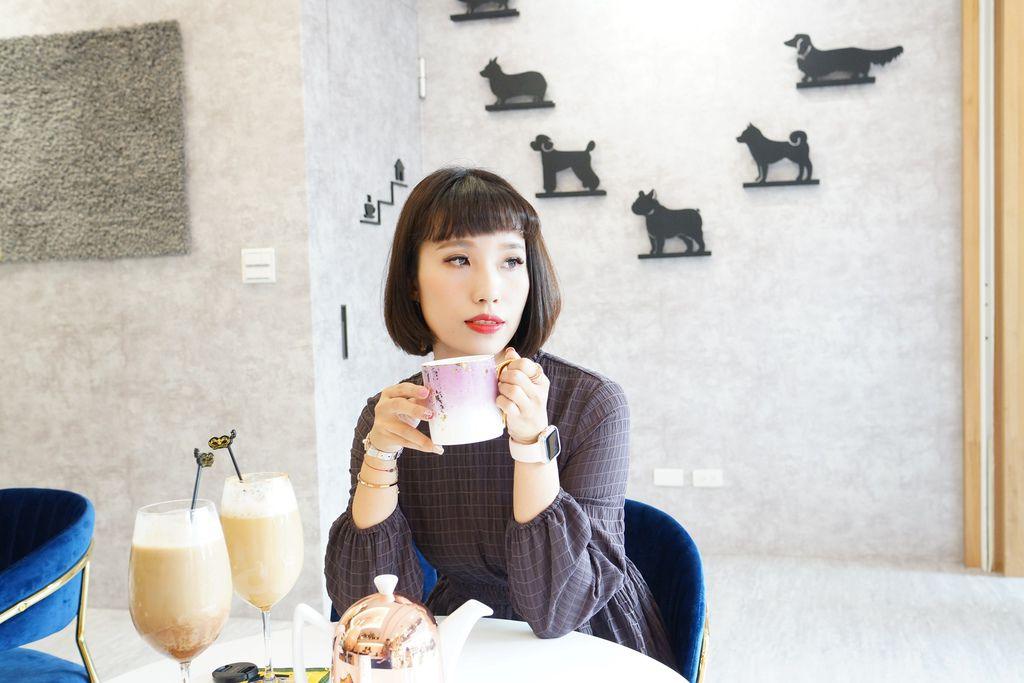高雄 Cafedog寵物沙龍 寵物美容x網美咖啡廳複合店 優質服務和時尚空間 給毛小孩舒適SPA美容43.JPG