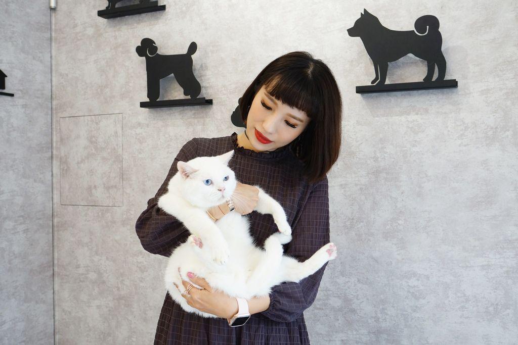 高雄 Cafedog寵物沙龍 寵物美容x網美咖啡廳複合店 優質服務和時尚空間 給毛小孩舒適SPA美容52.JPG