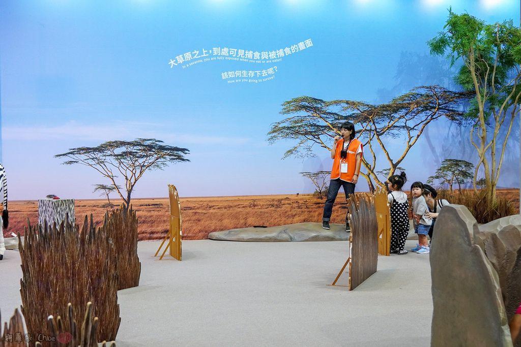 高雄科工館 變變變!MOVE生物體驗展 六大展區 寓教於樂 體驗動物大變身 by柯蘿依Chloe36.jpg