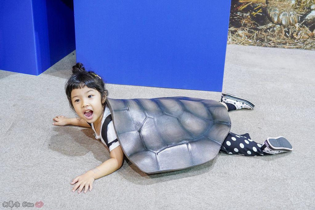 高雄科工館 變變變!MOVE生物體驗展 六大展區 寓教於樂 體驗動物大變身 by柯蘿依Chloe43.jpg