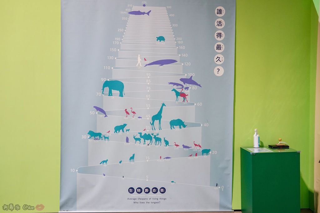 高雄科工館 變變變!MOVE生物體驗展 六大展區 寓教於樂 體驗動物大變身 by柯蘿依Chloe53A.jpg