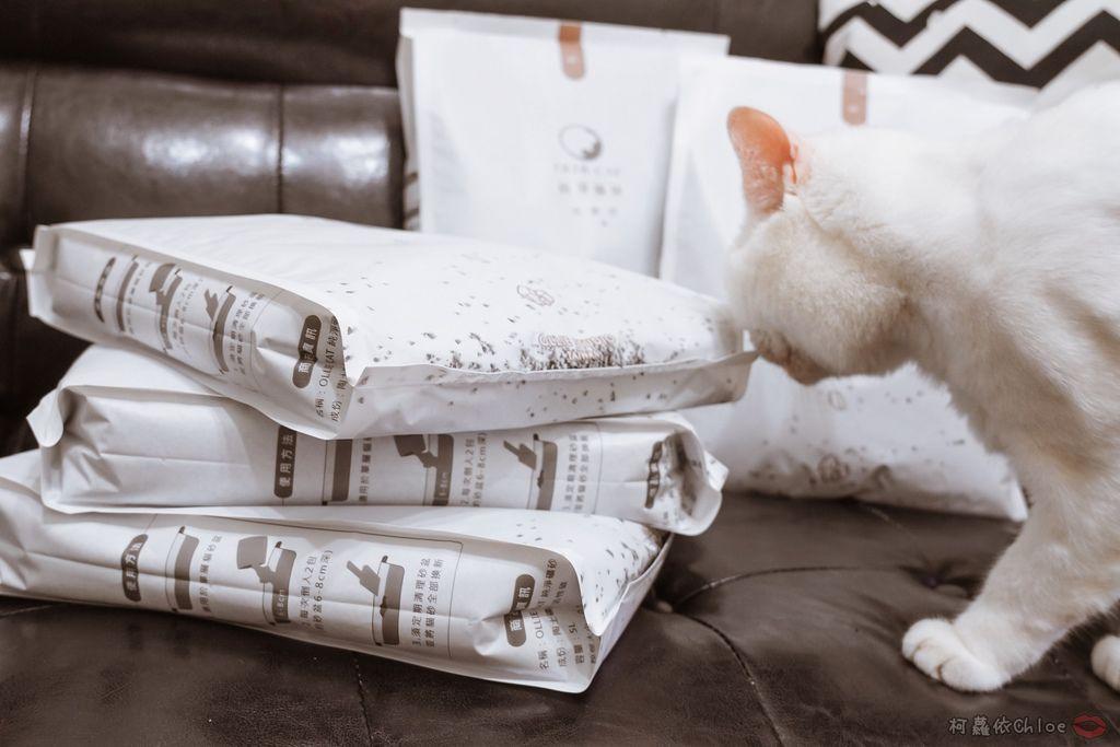 用過就回不去的貓砂!OLLIE CAT愛貓選物純淨礦砂低塵款8.JPG
