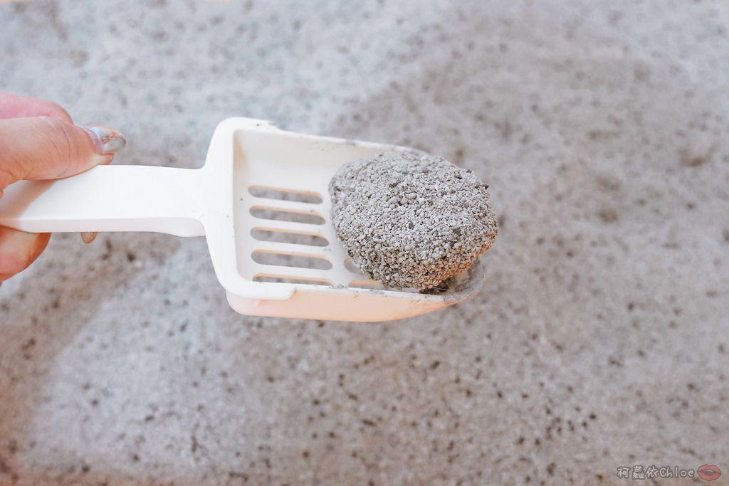 用過就回不去的貓砂!OLLIE CAT愛貓選物純淨礦砂低塵款28.JPG