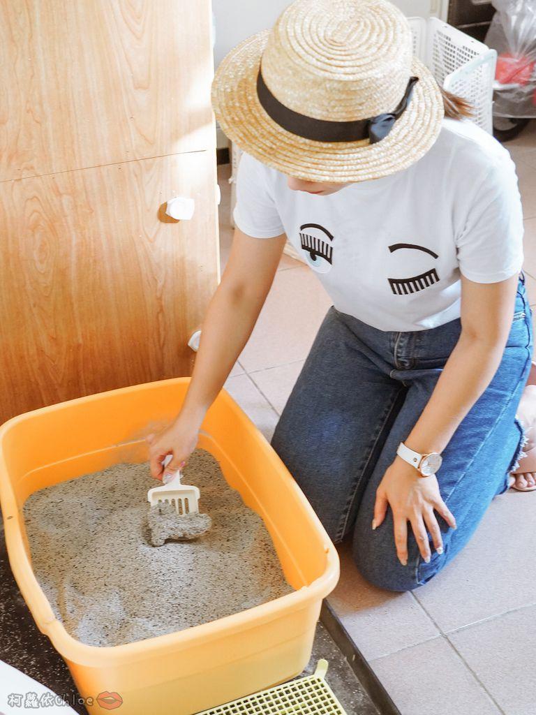 用過就回不去的貓砂!OLLIE CAT愛貓選物純淨礦砂低塵款40.JPG