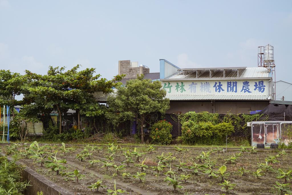 屏東萬丹 竹林有機農場 親子半日遊推薦 親子椿康節農村體驗1.jpg