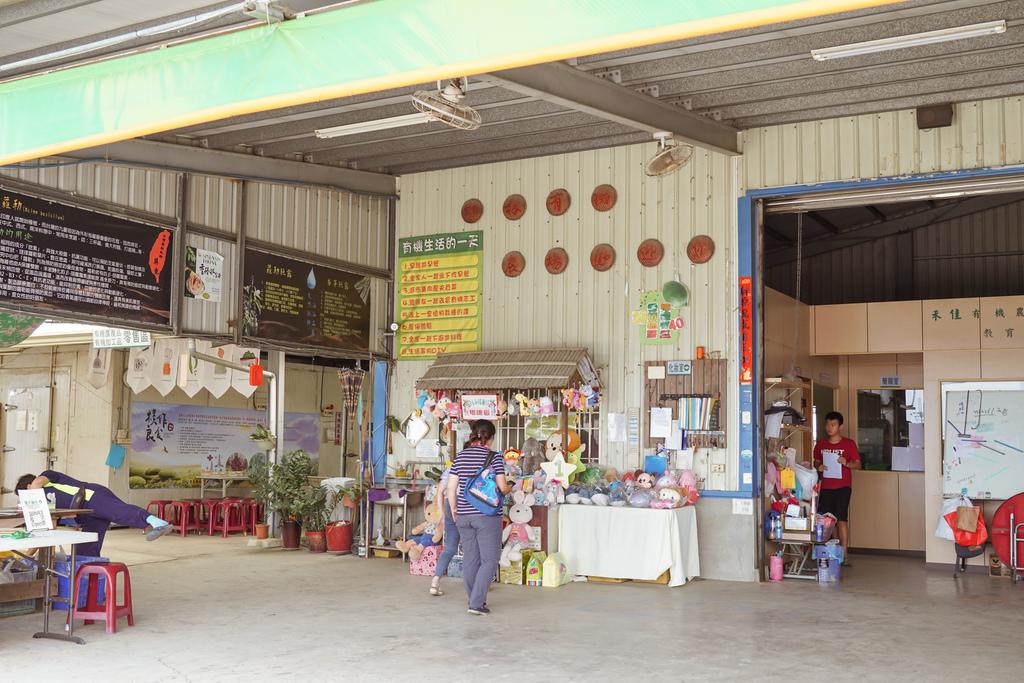 屏東萬丹 竹林有機農場 親子半日遊推薦 親子椿康節農村體驗3.jpg
