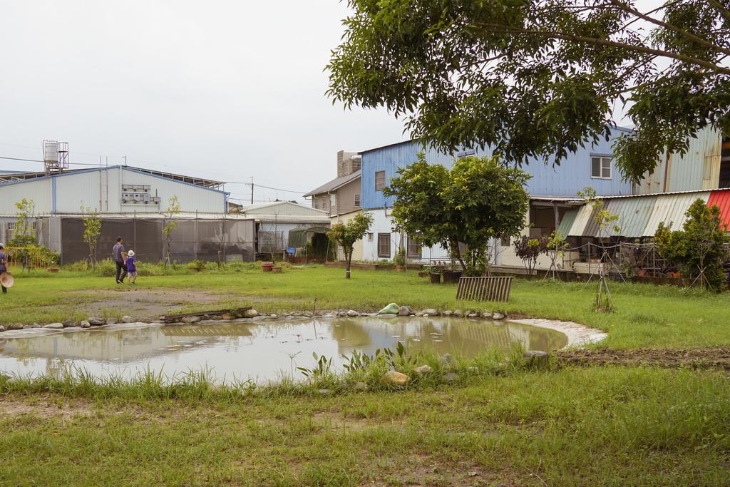 屏東萬丹 竹林有機農場 親子半日遊推薦 親子椿康節農村體驗9.jpg