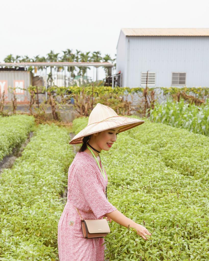 屏東萬丹 竹林有機農場 親子半日遊推薦 親子椿康節農村體驗19.jpg