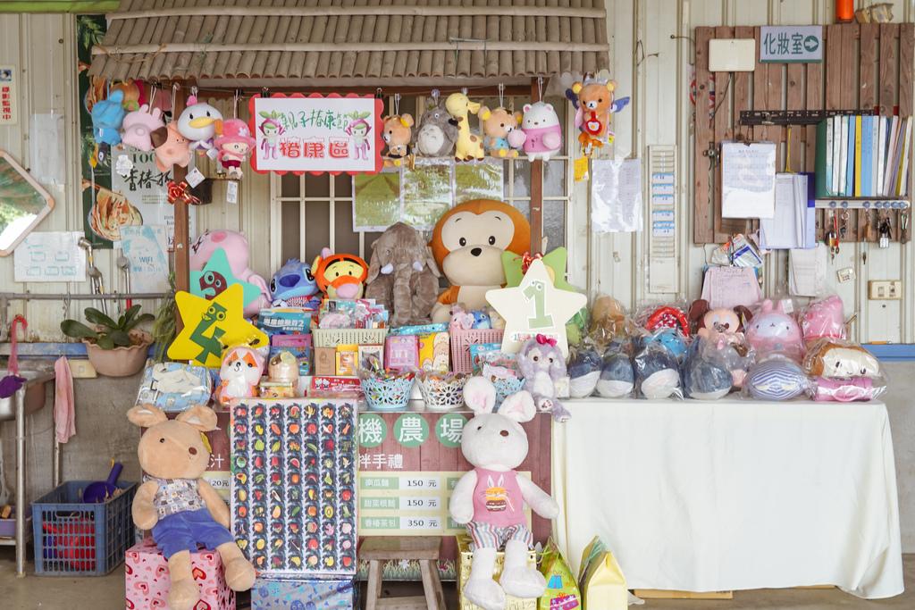 屏東萬丹 竹林有機農場 親子半日遊推薦 親子椿康節農村體驗25.jpg