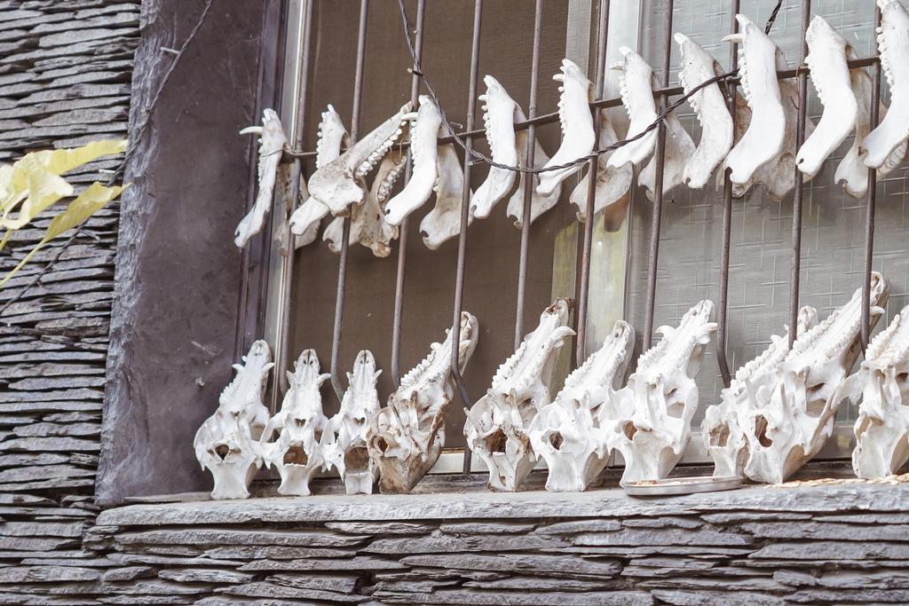 屏東一日遊 台灣好行508神山線 郵輪巴士 探訪神山霧台部落秘境77.jpg