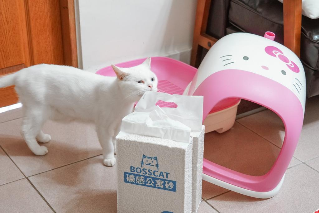 室內養貓首選貓砂貓老闆 礦感公寓砂 凝結力強 可沖馬桶的豆腐砂4.jpg