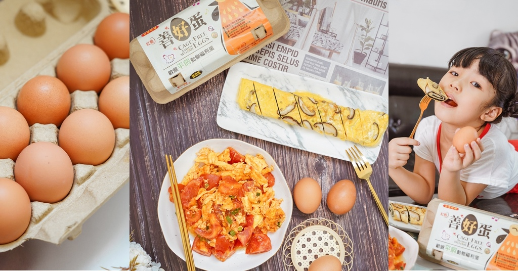 雞蛋料理 台美畜牧官田場 善好蛋 人道飼養用心好蛋 讓家人吃得更安心 #番茄炒蛋 #香菇海苔雞蛋捲.jpg
