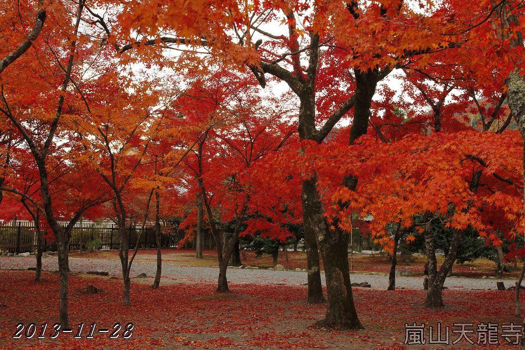 2013-11-28_07-44-41_C_pad