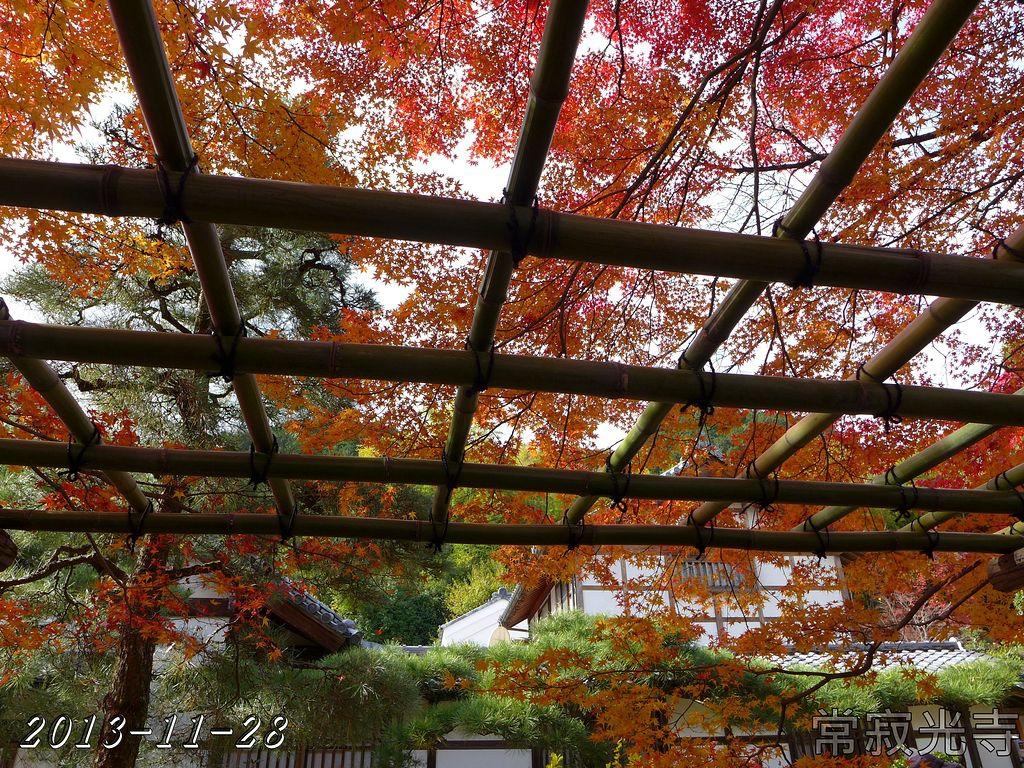 2013-11-28_10-47-14_P_pad
